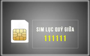 sim-luc-quy-giua-1